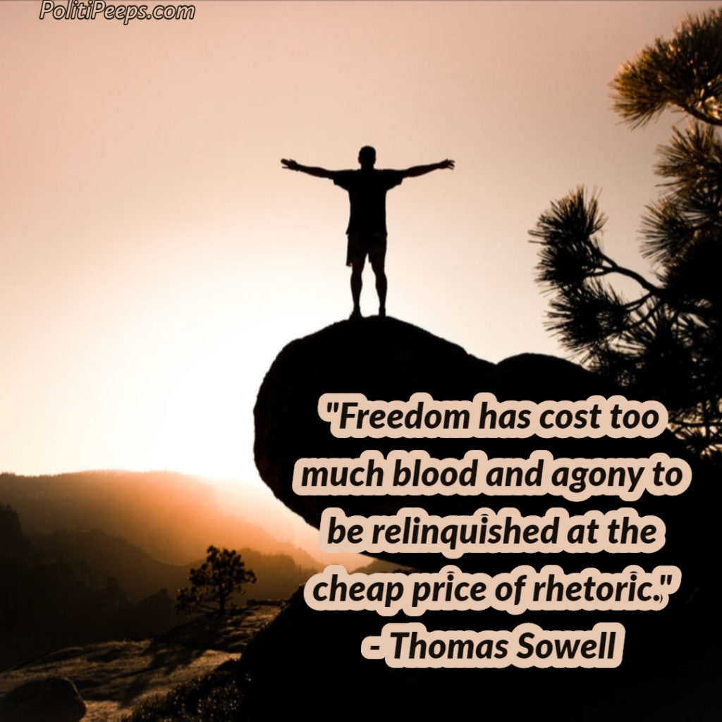 Freedom has cost too much blood and agony to be relinquished at the cheap price of rhetoric. - Thomas Sowell